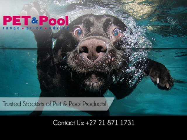 Pet and Pool Warehouse